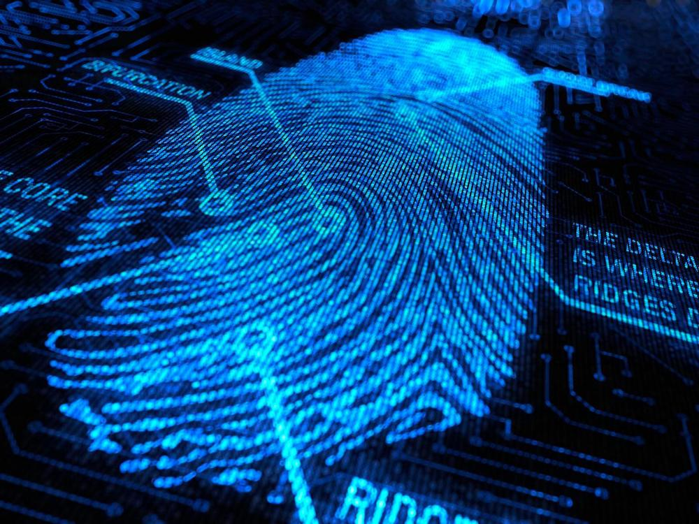 Image result for image of fingerprints